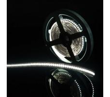 Светодиодная лента открытая холодного белого свечения 3014, IP20, 24 Вт/м, 12V